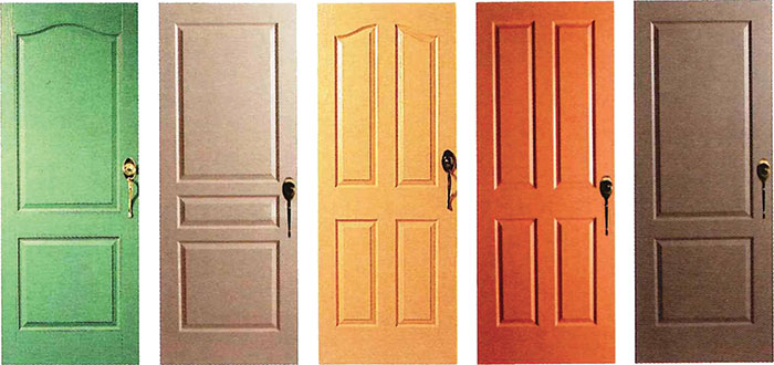Front-doors-Options-detail